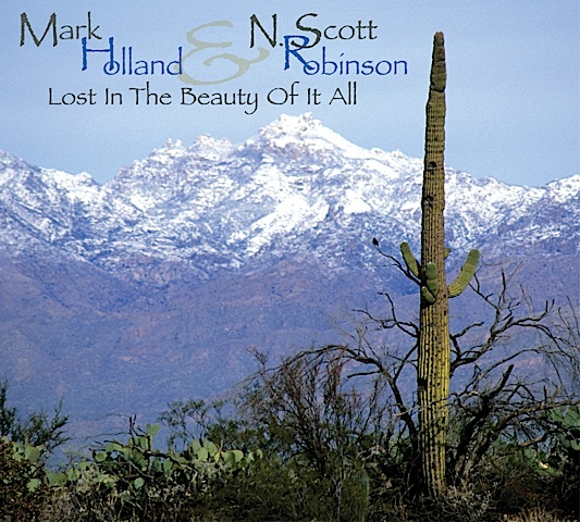 K.S. Resmi Discography - Lost In The Beauty Of It All